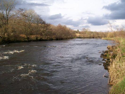 Ballintemple, East Mayo Anglers Association.
